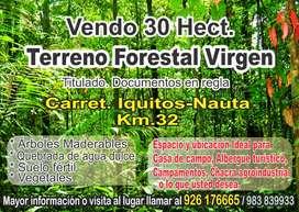 Terreno Forestar virgen 30 he. Titulado