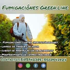 Fumigaciónes. Green.line
