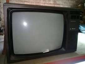 TELEVISION CONVENCIONAL A PURO COLOR
