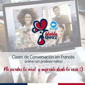 Clases de conversación / Apoyo escolar/Asesoramiento empresas - FRANCÉS