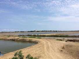 Chanduy la peninsula 80 hectareas camaro