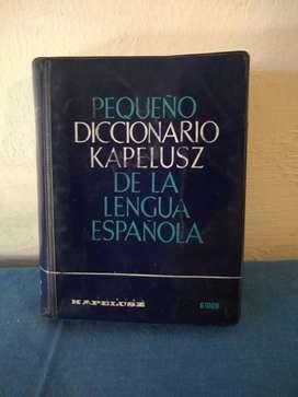 DICCIONARIO KAPELUSZ