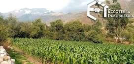En venta hermoso terreno de 1000m2, ubicado en Yanacona a solo 4 minutos de #Urubamba.