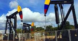 Traductor especializado en temas de hidrocarburos, petroleras y más