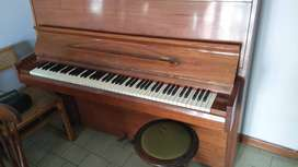 Vendo Piano Karl Zchul