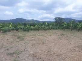 Vendo Terreno Grande en Portoviejo