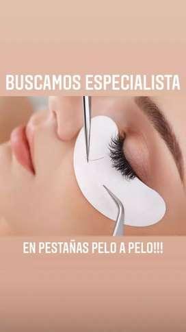 Solicito especialista en pestañas que manejen las técnicas pelo a pelo, volumen Ruso y que realicen Lifting..