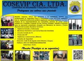 seguridad física y vigilancia electrónica