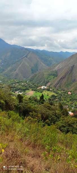 Venta de hermosa finca en pacho Cundinamarca