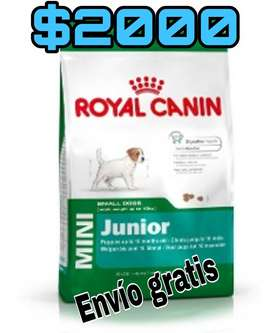 Royal canin mini JUNIOR/ADULTO 7,5KG