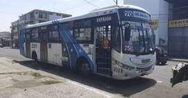 Bus urbano-Guayaquil
