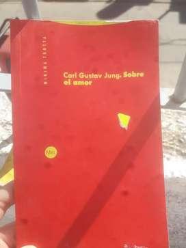 LIBRO CARL JUNG EL AMOR