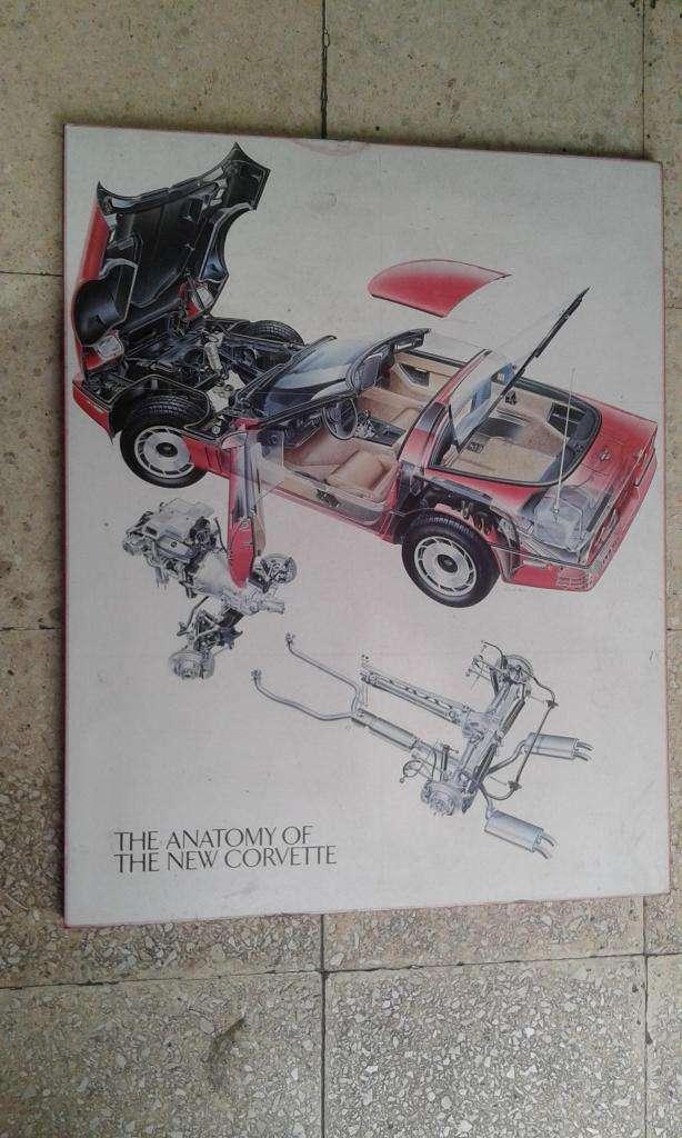 Cartel Mural Original ventas Chevrolet Corvette 1984 Concesionario Anatomía nuevo Corvette USA 0