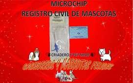 IMPLANTACIÓN MICRO CHIP VENDO BOGOTA COLOMBIA, IDENTIFICA TU MASCOTA, MICROCHIP