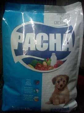 Alimento para Cachorros Pachá
