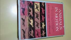 LIBRO: ANIMALS INMOTIAN EADWEARD MUYBRIDGE