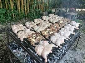 Parrillero argentino para eventos se asan pollos cosillas de cerdo y carne de res