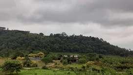 Venta de una finca de 64 hectareas