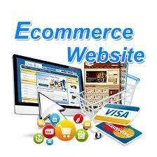 desarrollo sitio web comercio electronico, carrito de compras