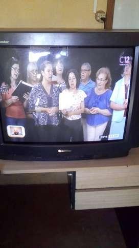 Tv 29 excelente estado