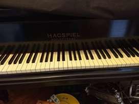 Piano de cola Hagspiel Dresden alemán de 1880/90
