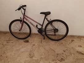 Bicicleta GT Terra