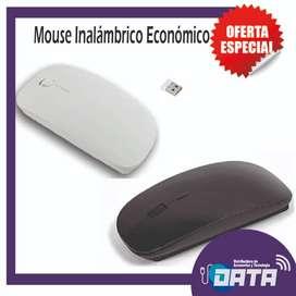 MOUSE INALAMBRICO Económico