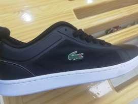 Zapatos lacoste estadounidense