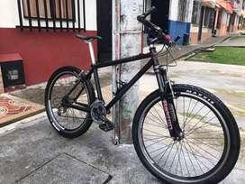 bicicleta carbono clasica