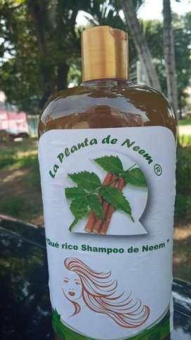 RICO SHAMPOO DE NEEM
