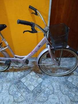 Bicicleta Mussetta flowers rodado 26