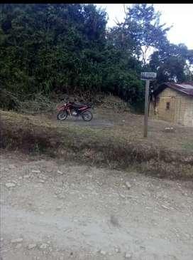 Se vende Lote en la vereda el uvital municipio del Pital Huila