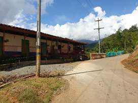 Se vende finca a 20 minutos de Trujillo, sobre vía principal pavimentada