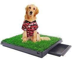 baño para mascotas Ecológico y Portátil para perros de Razas Pequeñas, Medianas y Grandes PET POTTY