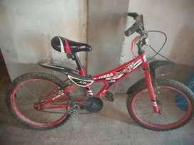 Vendo bicicleta XTerra
