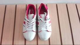Zapatos - Zapatillas Marca DLG