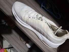 Zapatos d dama