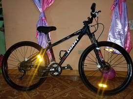 Bicicleta GIANT.