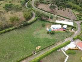 Finca de 6860 mts2, ubicada en condominio, casa de tres alcobas todas con baño, sala, comedor, bar,Jacuzzi,terraza.