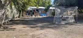 VENDO 2 CASAS CON TERRENO DE GRAN TAMAÑO EN EXCELENTE UBICACION