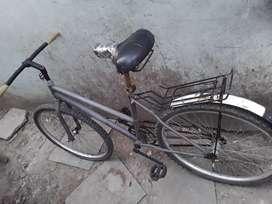 Bicicleta Mujer Rod 26 con Parrilla