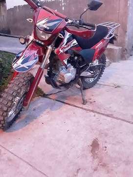 Marca sumo x_torque motor 250