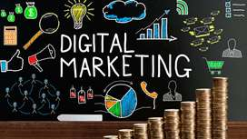 Se busca practicante con experiencia en marketing digital