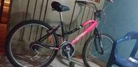 Vendo  bici  bien  tenida