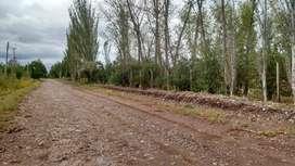 Regalo terreno ubicado en Maipú