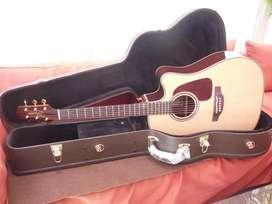 Guitarra Takamine Pro Series P5DC Handcraft Japan