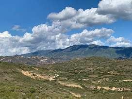 35 hectareas en chachapoyas