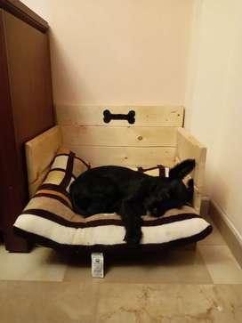 Fabrico vendo camas para perros de madera