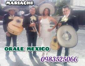 Tu Mariachi Órale Mexico