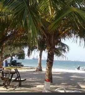 Cartagena alumbrado 3_9 dic_2021